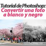 Convertir una foto a blanco y negro