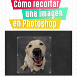 Cómo Recortar una Imagen en Photoshop