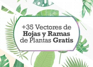 +35 Vectores de Hojas y Ramas de Plantas Gratis