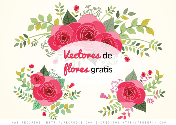 3 Vectores De Flores Hermosas » Regardis